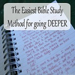 Plan of Salvation Study Guide